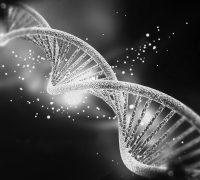 ADN-Baza-Bucuresti